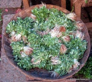 Fenugreek leaf bunches for sale at Devaraja Market