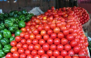 Tomato, plenty of them grows in Mysore region.