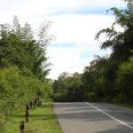 Mysore to Coimbatore