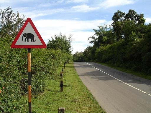 A signboard cautioning of elephants inside Satyamangalam forest